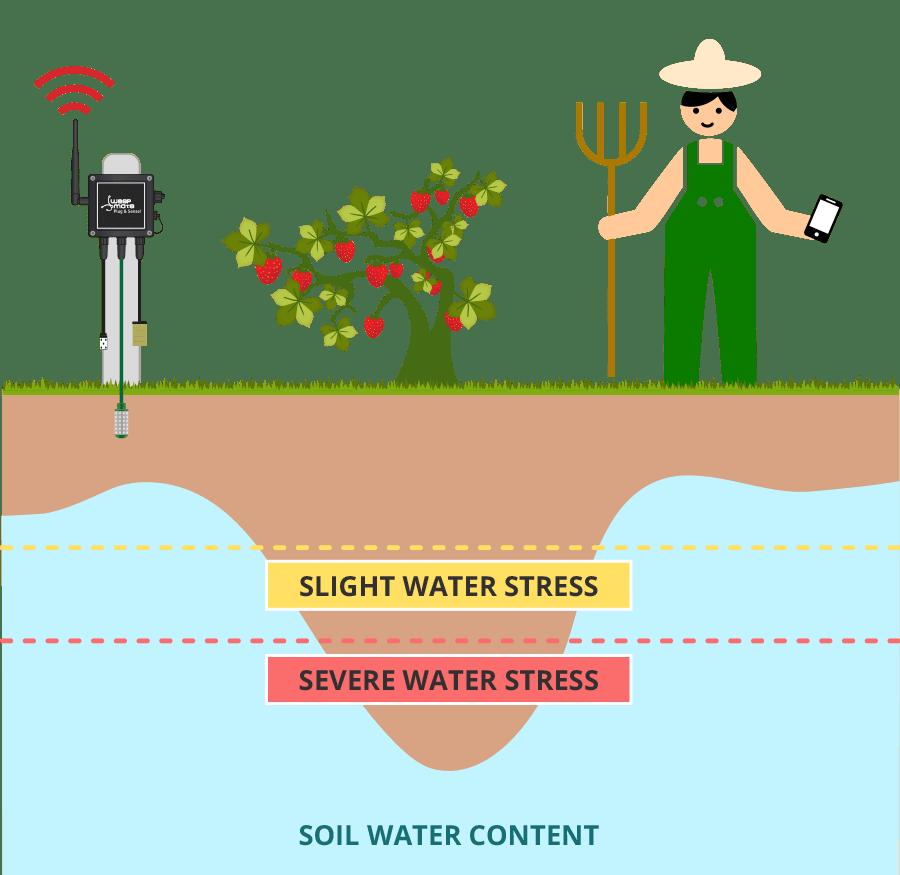 Waspmote Plug & Sense! Smart Agriculture