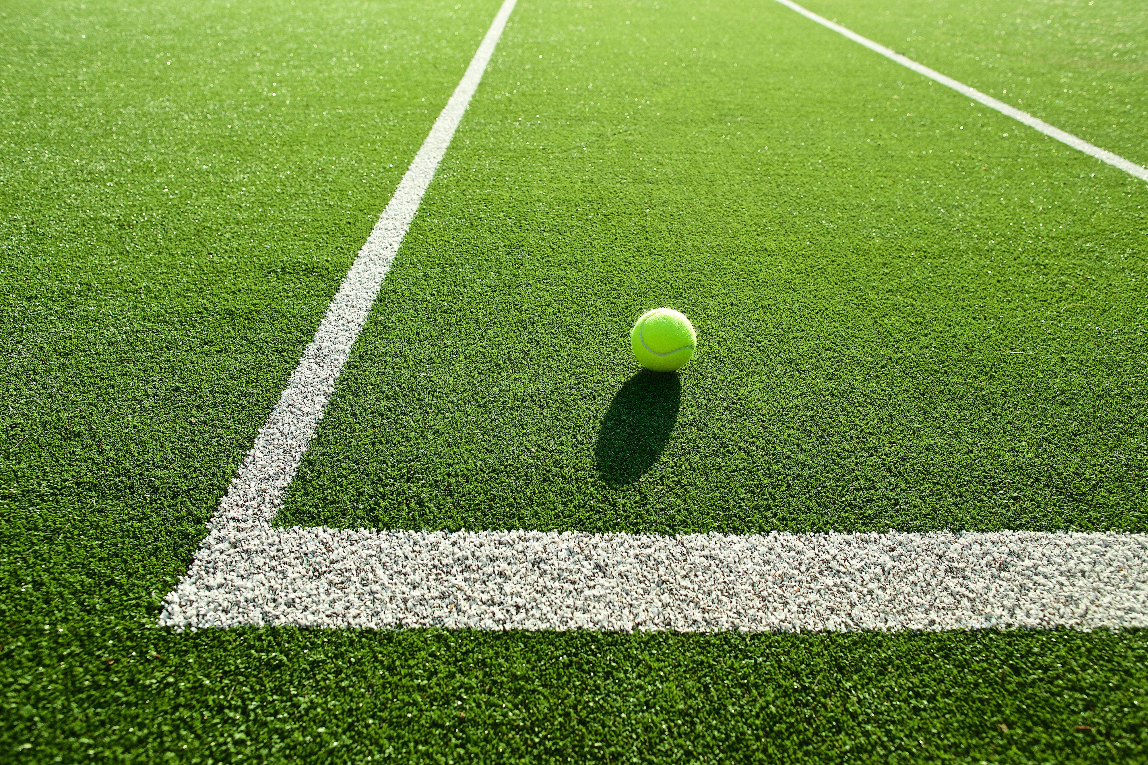 tennis ball_lower res_shutterstock_303271421 copy